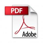 Google PDF Image Result