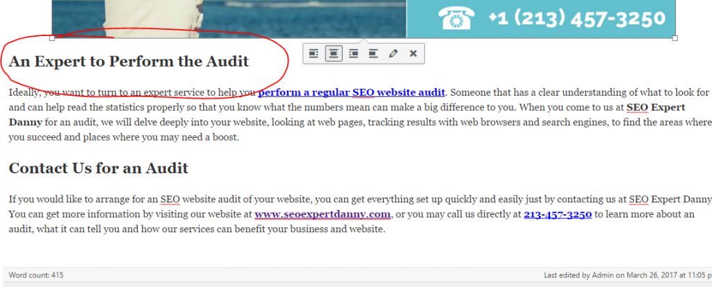 Blog Post SEO Correct On WordPress