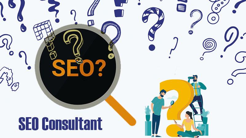 SEO Consultant